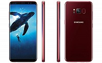 Samsung Galaxy S8 Burgundy Red Front,Back And Side pictures