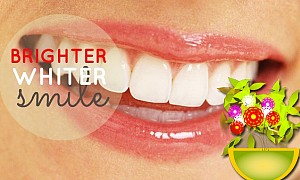Ayurvedic Treatments for your Toothache