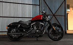 Harley Davidson Iron 883 Hard Candy Custom