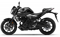 Yamaha MT 25 pictures
