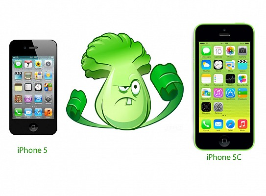 : iPhone 5 vs iPhone 5C